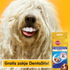 gratis-dentastix