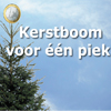 gratis-cadeaupas-bij-aankoop-kerstboom-ikea