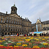 gratis-bosje-tulpen-plukken-18-jan-op-de-dam-amsterdam