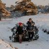 gratis-kerstboom-zagen-en-meenemen-park-hoge-veluwe