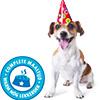 gratis-smolke-maaltijd-voor-je-jarige-hond